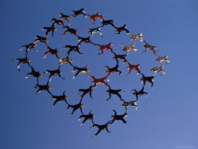 Skydivers in a Diamond Formation Photographic Print at AllPosters.