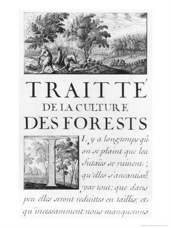 Traite de La Culture Des Forets Giclee Print by Sebastien Le Pretre de Vauban