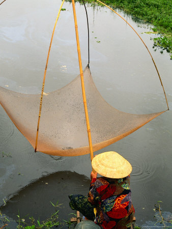 fishing net pictures. Raising Fixed Fishing Net,