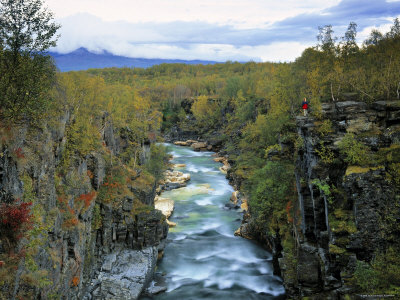 Abisko River Gorge, Lappland, Sweden Photographic Print by Gavin Hellier