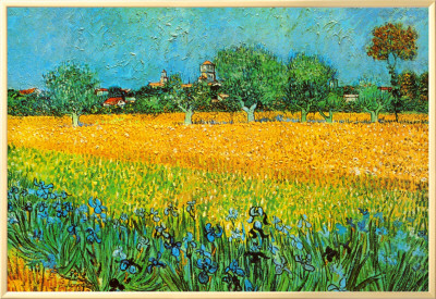 View of Arles with Irises Framed Canvas Print by Vincent van Gogh