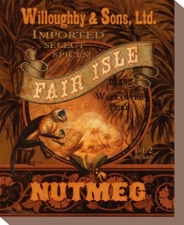 Nutmeg Stretched Canvas Print by Pamela Gladding