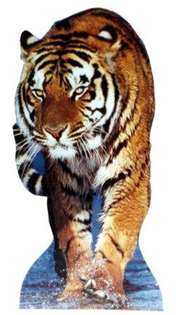 Tiger Cardboard Cutouts