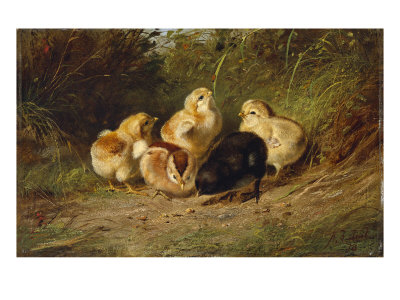 Chickens, 1878 Giclee Print by Arthur Fitzwilliam Tait