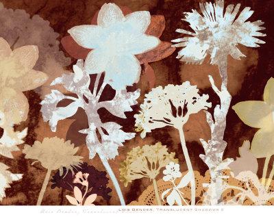 Translucent Shadows I Prints by Lois Bender