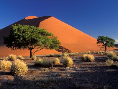 Sossosvlei Dunes, Namib-Naukluff Park, Namibia Lámina fotográfica por Art Wolfe