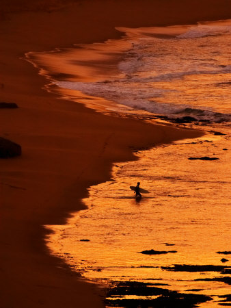 Surfer at Dawn, Gibson's Beach, Twelve Apostles, Port Campbell National Park, Victoria, Australia Photographic Print by David Wall