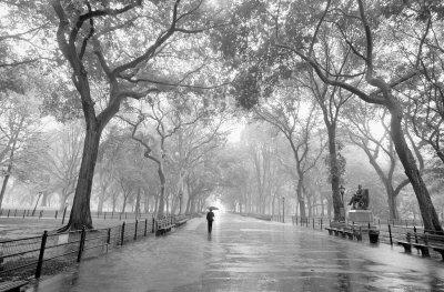 Poet's Walk Prints by Henri Silberman