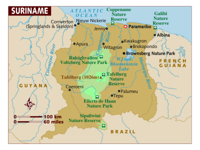 Suriname Maps