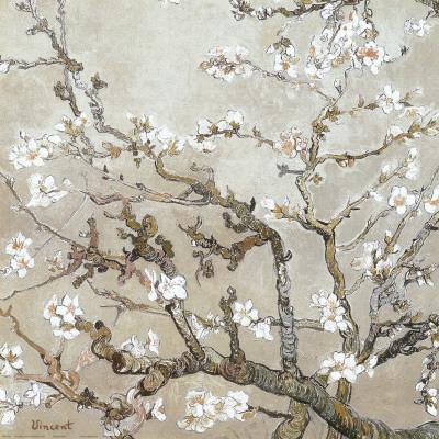 Mandelgrenar i blom, San Remy, ca 1890 (barkbrun) Posters av Vincent van Gogh