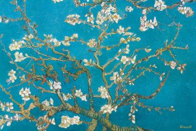 Mandelgrenar i blom, San Remy, ca 1890 Planscher av Vincent van Gogh