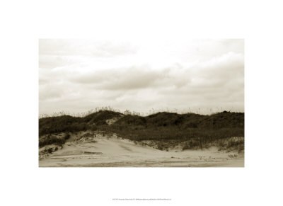 Ocracoke Dune Study I Limited Edition by Jason Johnson