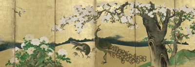 Cherry Blossoms and Peacocks Poster von Kano Sansetsu