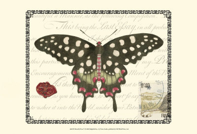 Butterfly Prose V Posters