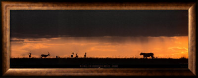 Lion Hunting, Masai-Mara, Kenya Print by Michel & Christine Denis-Huot