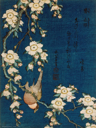 Goldfinch and Cherry Tree, c.1834 Prints by Katsushika Hokusai