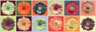 Gerbera Spectrum Art Print