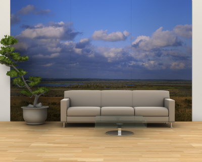 Clouds over a Landscape, Paynes Prairie Preserve State Park, Gainesville, Florida, USA Wall Mural – Large