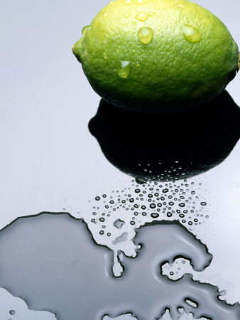 Juicy Lime in Puddle of Water Photographic Print