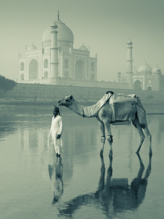 Camal and Driver, Taj Mahal, Agra, Uttar Pradesh, India Photographic Print by Doug Pearson