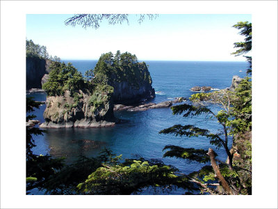 Cape Flattery Giclee Print