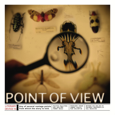 Literary Devices: Point of View Print by Jeanne Stevenson at ...