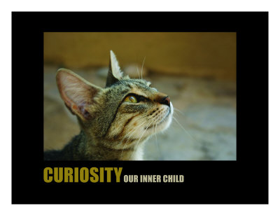 Inspirational-Motivational: Curiosity Photographic Print by Andrew Schwartz