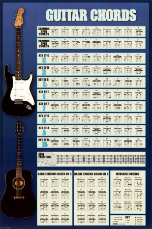 Guitar Cords Photo