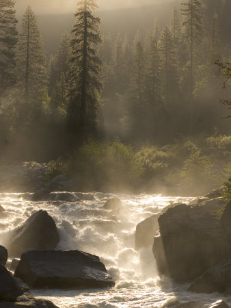 North Fork of the Stanislaus River Near Dorrington at 6,000 Feet Photographic Print by Phil Schermeister