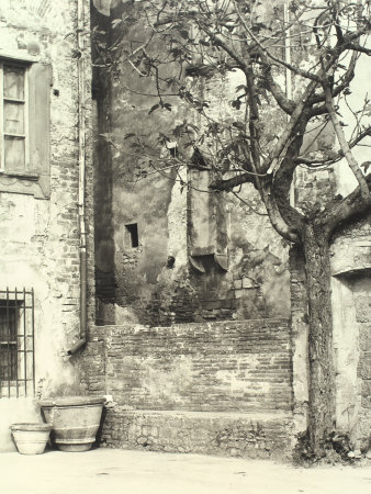 The Wall of a Building Ruined by Bad Weather, Showing Blemishes from Humidity and Cracked Plaster Photographic Print by Vincenzo Balocchi