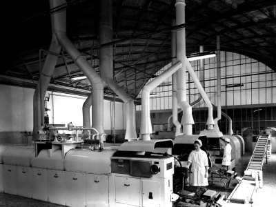 Workers at the Machinery of the Lazzaroni Di Saranno Cookie Factory Photographic Print by A. Villani