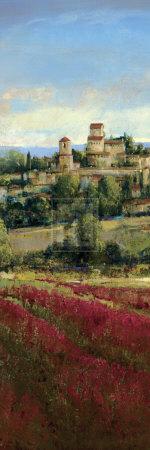 Tuscan Harvest I Print by P. Patrick