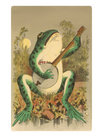 Frog Playing Banjo in Moonlight Prints