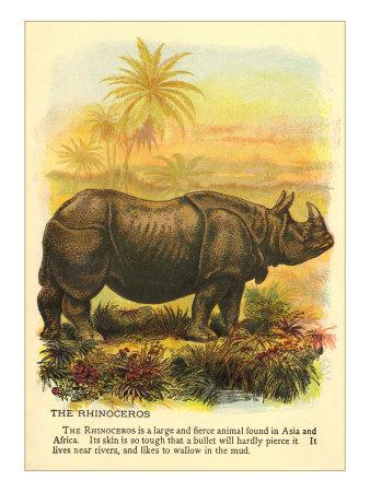 Rhinoceros Plakater