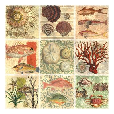 Under The Sea I Prints