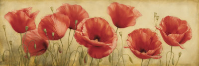 Poppies Grace I Art Print