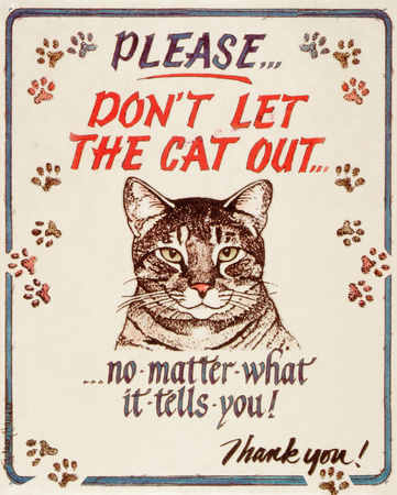 Please don't let the cat out...no matter what it tells you funny cat saying artwork