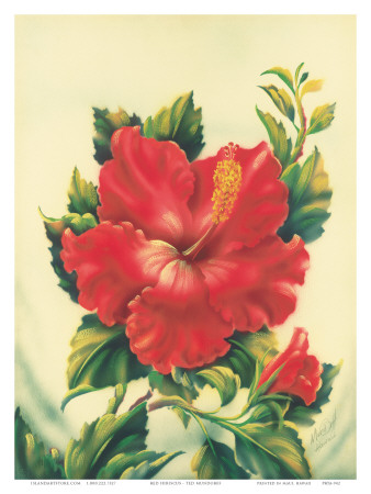 Red Hibiscus, Hawaiian Tropical Flower Posters by Ted Mundorff