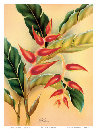 Heliconia, Hawaiian Tropical Flower c.1940s Prints by Frank Oda