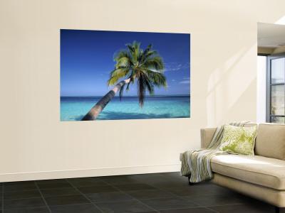 Tropical Beach at Maldives Wall Mural by Jon Arnold
