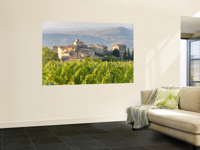 Vineyard and Village, Volpaia, Tuscany, Italy Wall Mural
