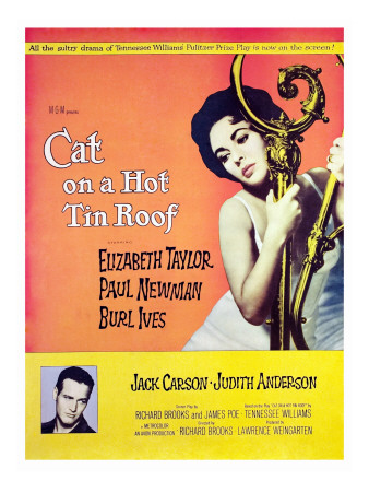 Cat on a Hot Tin Roof, Elizabeth Taylor, Paul Newman, 1958 Photo