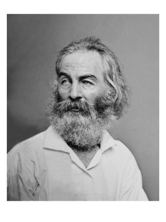 Walt Whitman American Poet, Author, and Journalist in Portrait from Mathew Brady Studio, 1863 Photo
