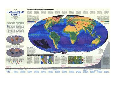 Endangered Earth Map Art Print