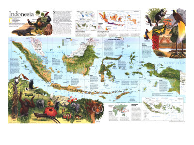 1996 Indonesia Theme Map Prints by  National Geographic Maps