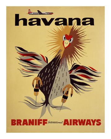 Braniff International Airways, Havana Prints