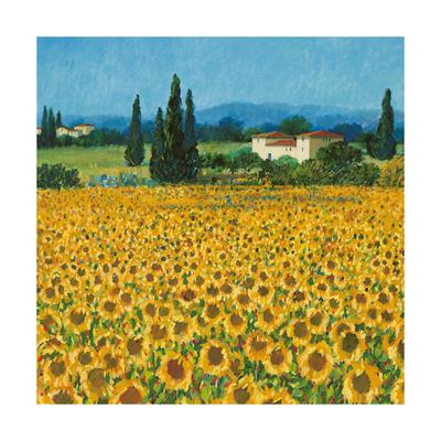 Farm Near Siena Stampa giclée premium di Hazel Barker