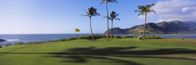 Palm Trees on a Golf Course at the Seaside, Kiele Course, Number 13, Kauai Lagoons Golf Club Photographic Print by  Panoramic Images