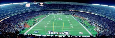 Philadelphia Eagles Football, Veterans Stadium Philadelphia, PA Fotoprint av Panoramic Images,
