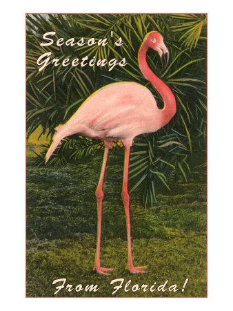 Season Greetings from Florida, Flamingo Posters